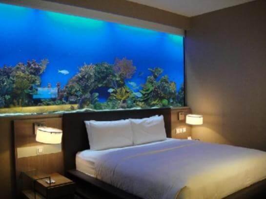 Aquarium furniture Supreme
