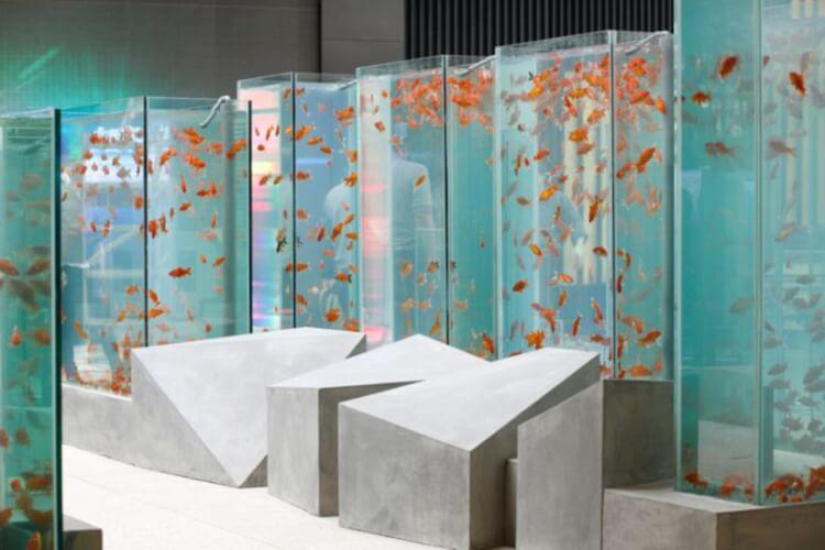 Fishpond Aquarium Furniture