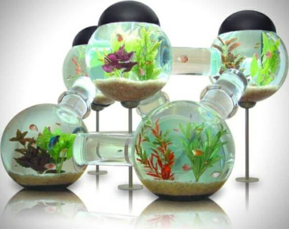 Labyrinth Aquarium Furniture