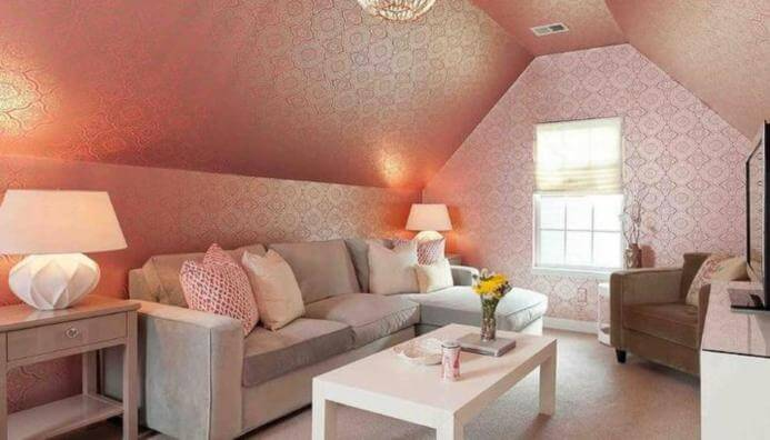 Pink Living Room Ceiling Texture Types