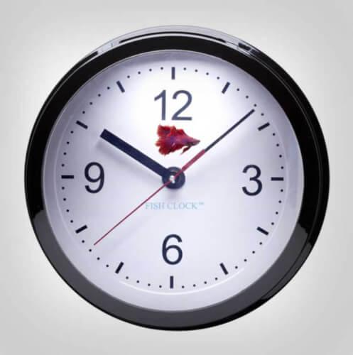 clock aquarium furniture design
