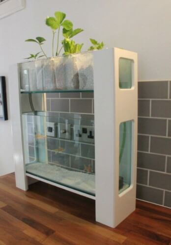plant for aquarium furniture design